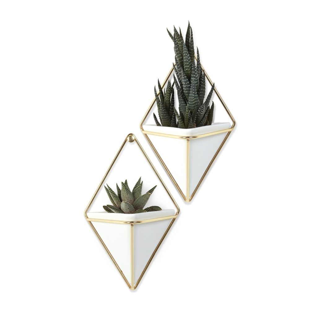 Umbra Trigg Hanging Planter Vase Graduation Gift Idea